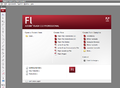 Adobe Flash - Imagen 1