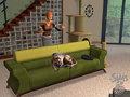 Los Sims 2: Mascotas - Imagen 5