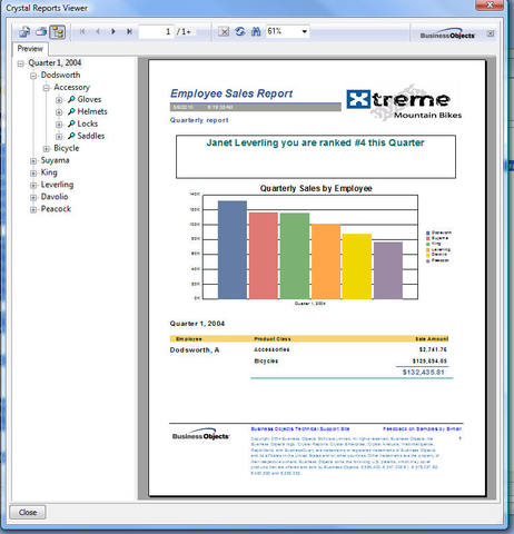 Crystal Reports Viewer - Download