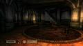 The Elder Scrolls IV: Oblivion - Image 13