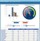 Imagen Crystal Reports 2008