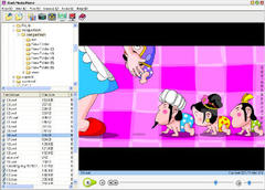 Imagen Flash Media Player 3.9