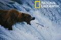 National Geographic: Best of Photo of the Day Screensaver - Imagen 1