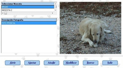 Imagen Gestión de Mascotas 2.0