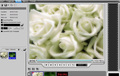 Ulead DVD Workshop - Imagen 4